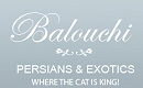 Balouchi